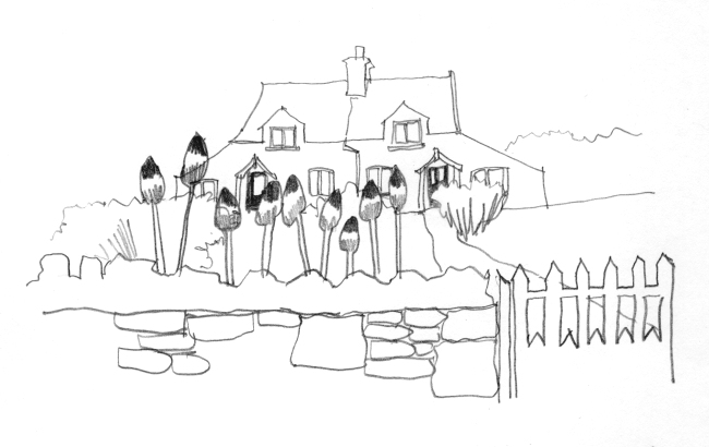 Pencil-line drawing of paired cottages with tall flowers